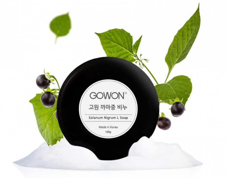 Lu-Lu-YYc_Gowon-Solanum-Nigrum-L-Soap