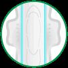 icon-lYp-chYng-tran